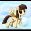Пони: Сибси