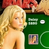 Poker Daisy Dukes of Hazzard