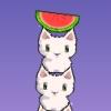Cat Cat Watermellon