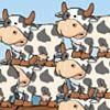 Коровы в море
